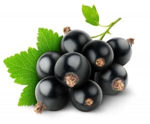 Le fruit cassis