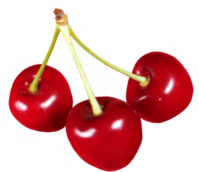 Le fruit cerise