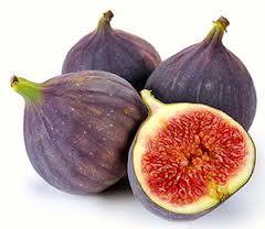 Le fruit figue