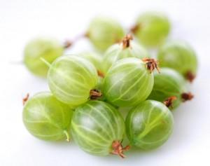 Le fruit groseille à maquereaux