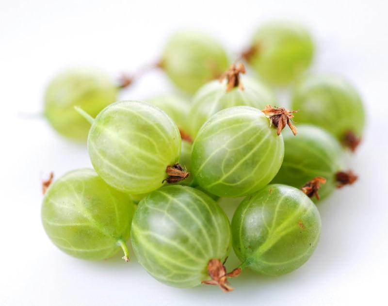Le fruit groseille à maquereau: propriétés et bienfaits