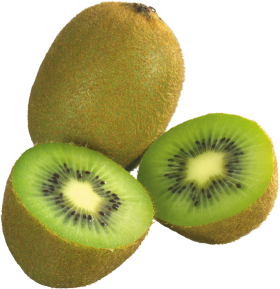 Le fruit kiwi