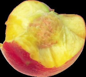 Le fruit nectarine