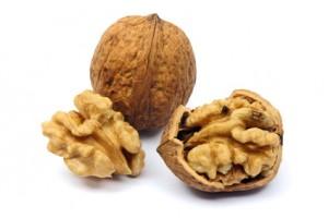Le fruit noix