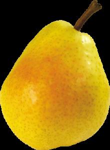 Le fruit poire
