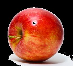 Le fruit pomme