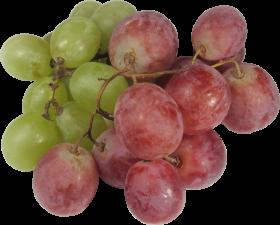Le fruit raisin