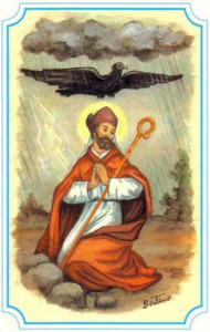 Fête du 08 Juin : saint Médard