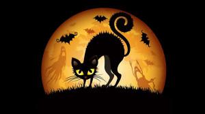 Superstitions - croyances françaises: significations du chat noir