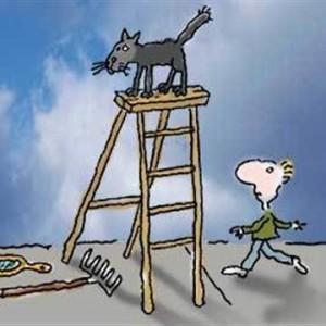 Superstition et Echelle