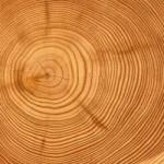 Superstition et Toucher du bois