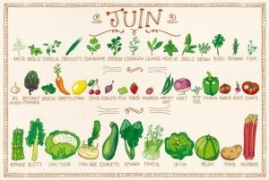 Tous les fruits et légumes du mois de juin