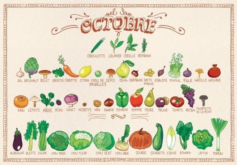 Tous les fruits et légumes du mois de Octobre