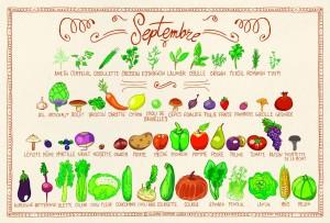 Tous les fruits et légumes du mois de septembre