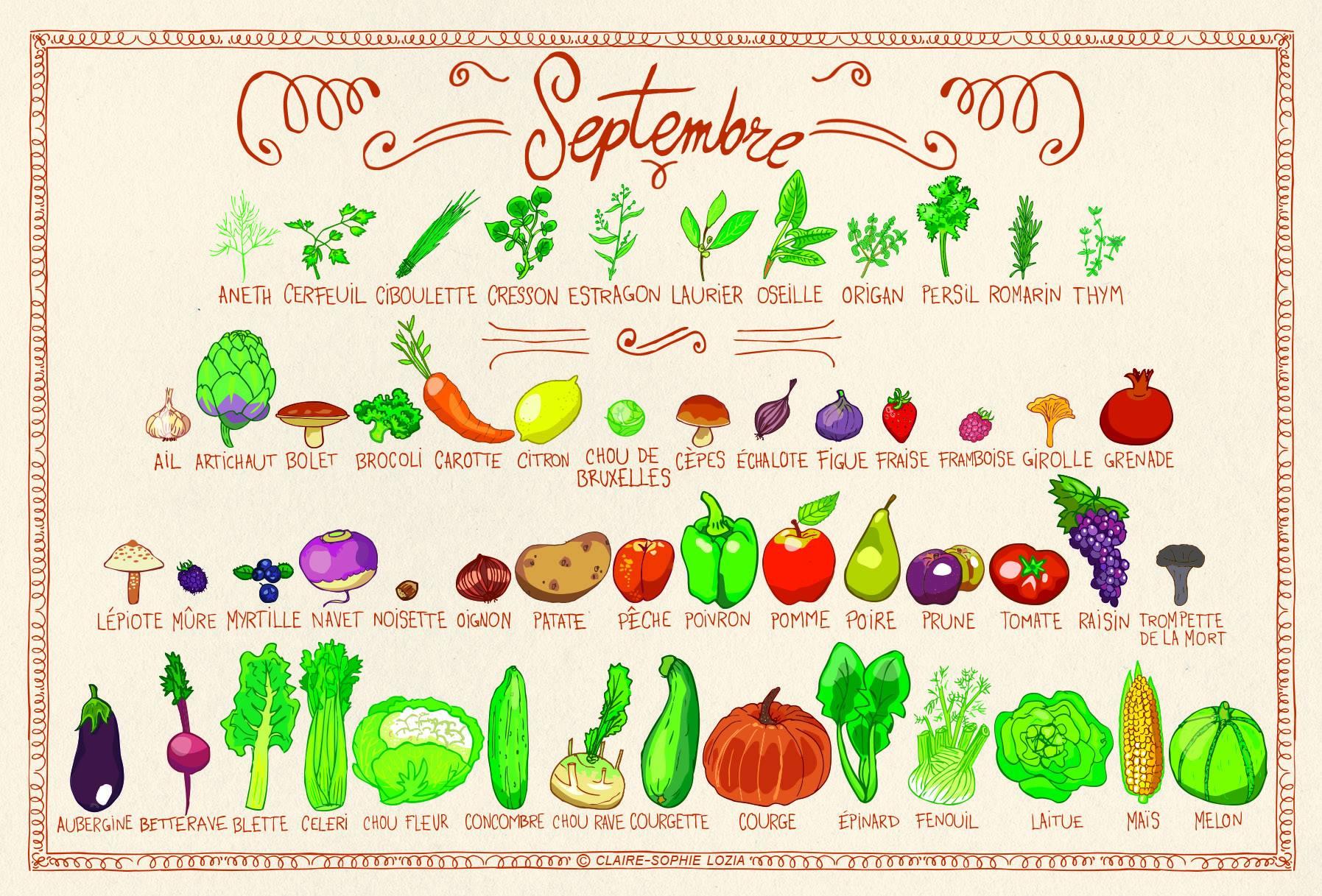 tous les legumes