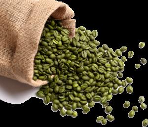 Vertus du Café vert et propriétés médicinales