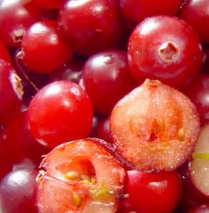 Vertus de la canneberge cranberry et propriétés médicinales