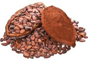 Vertus du cacao et propriétés médicinales